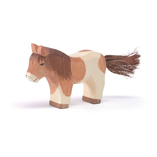 Ostheimer Shetland Pony Standing at Little Sprout