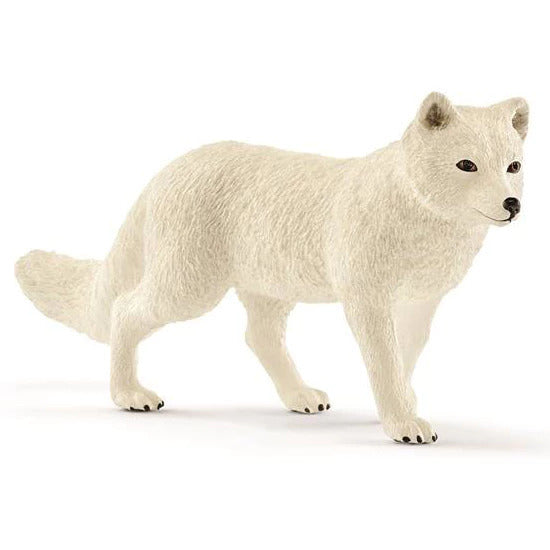 Schleich 14805 Arctic Fox available at Little Sprout