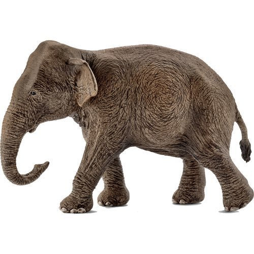 Schleich 14753 Asian Elephant Female at Little Sprout