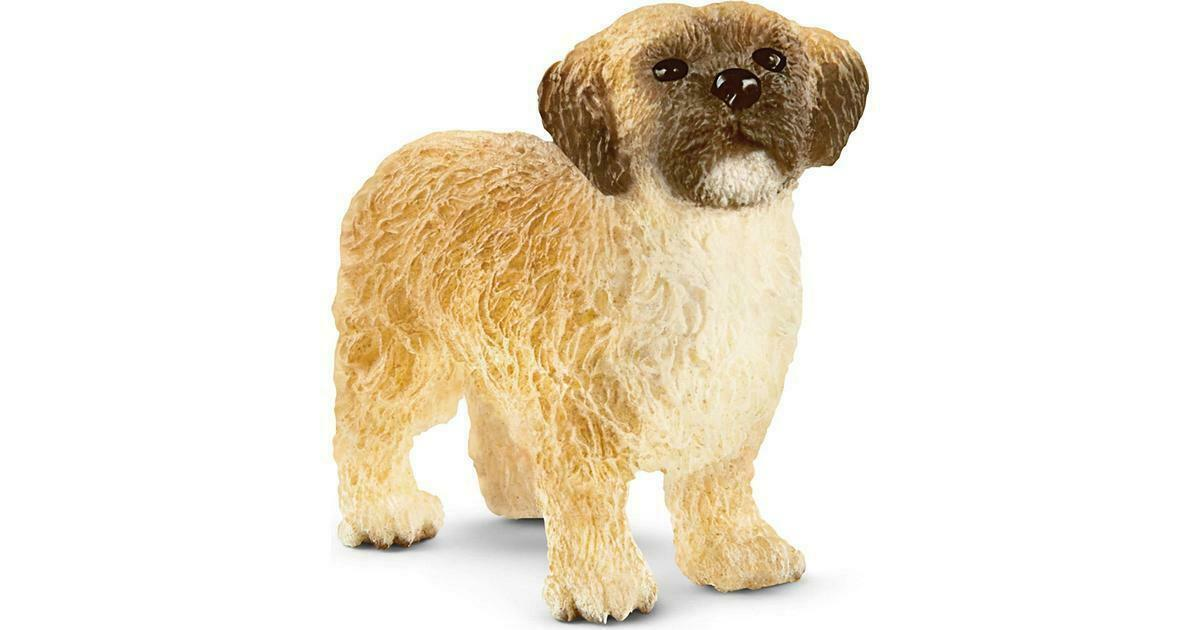 Schleich 13931 Shih Tzu Maltese Mix Dog