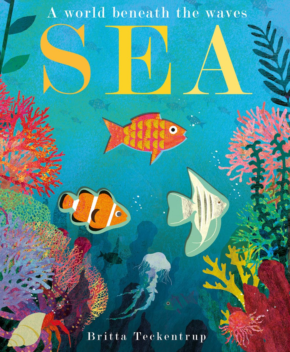 Sea - A World Beneath the Waves Peek-Through Book by Britta Teckentrup at Little Sprout