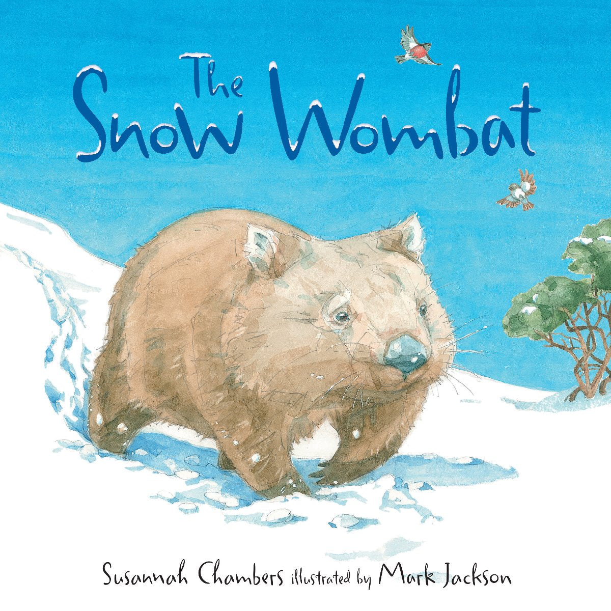 The Snow Wombat hardback book by Susannah Chambers. Illustrated by Mark Jackson