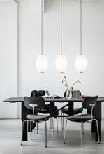 Load image into Gallery viewer, Dahl Large Pendant Lamp | Brass
