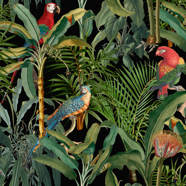 Parrots of Brazil Anthracite Wallpaper