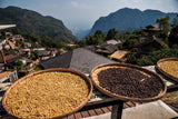 antigua guatemala coffee drying kaphibeans