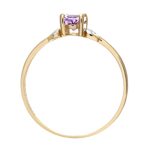 9ct Yellow and White Gold Ladies Amethyst Birth Stone Ring