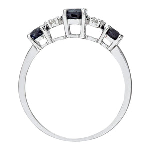9ct White Gold Diamond and Sapphire Eternity Ladies Ring