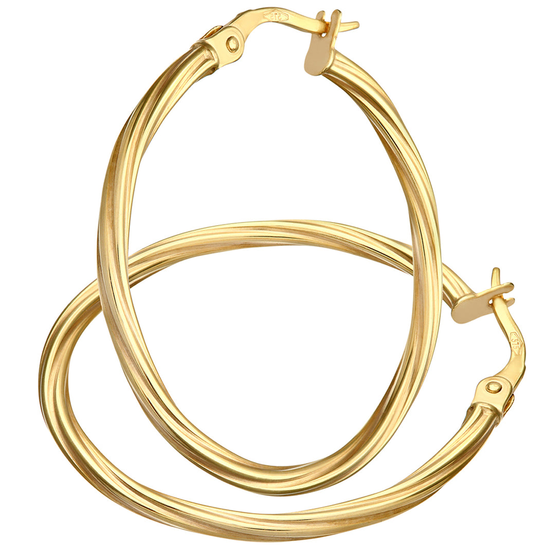 9ct Yellow Gold Textured Hoop Earrings of 2.5cm Diameter