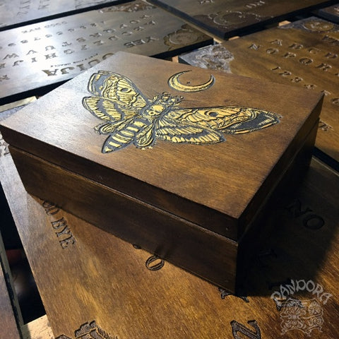 "Box - ""Golden Death's Head Moth"""