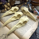Candle - Raven Skull - White - Beeswax Candle