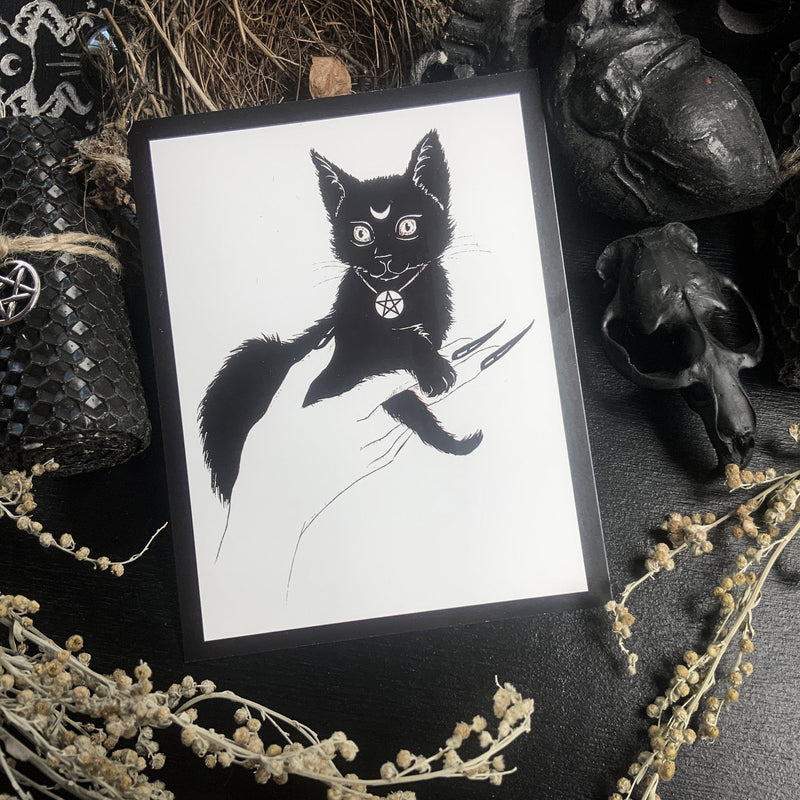 Postcard - Black Kitten