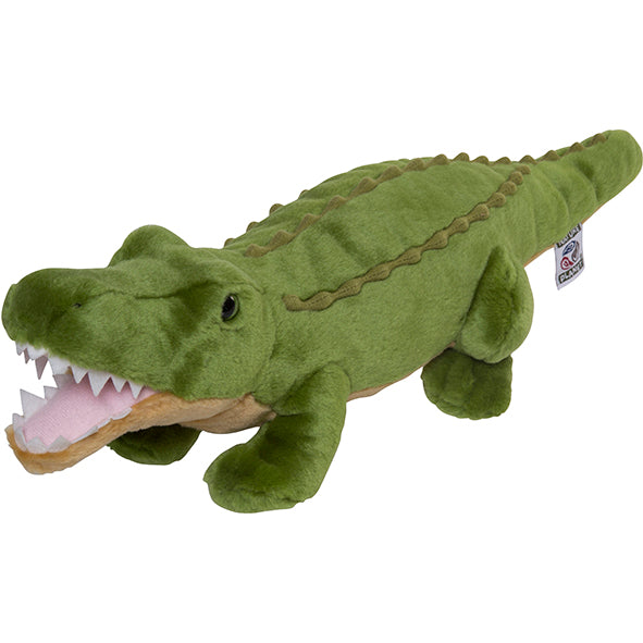 Plan L Crocodile