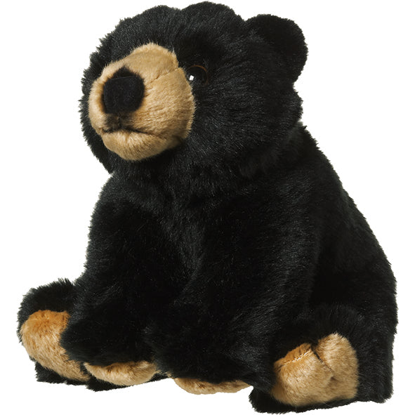 Plan M Black Bear
