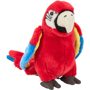 Plan M Red Macaw