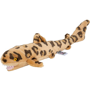Plan M Leopard Shark