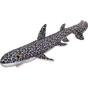 Splash Leopard Shark