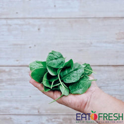 Spinach (Baby) - 300g per pack