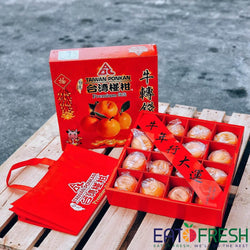 Premium Taiwan Ponkan Mandarin Orange Gift Box - 16 pcs