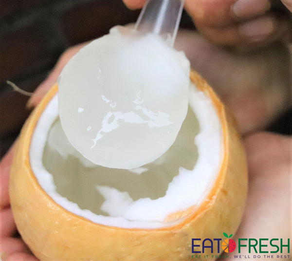 Coconut Premium (Jelly) - 2 Pcs - Eat Fresh SG