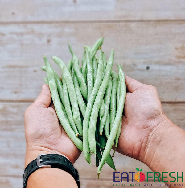 French Beans - 500g per pack - Eat Fresh SG