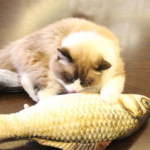 Realistic Looking Cat Kicker Fish Toy