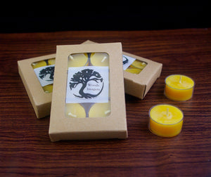 Beeswax Tea lights - 6 pack gift box Canadian Beeswax Candles