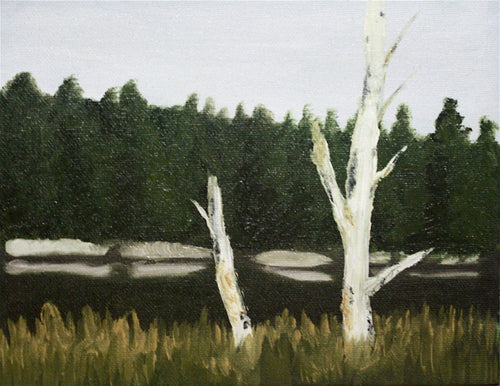 Birch and Pond study Oil Painting on Canvas board - Woods Imagery