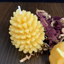 Load image into Gallery viewer, Beeswax Votive Candle - Canadian 100% Pure Beeswax Mini owls and pinecone Gift Box of 3