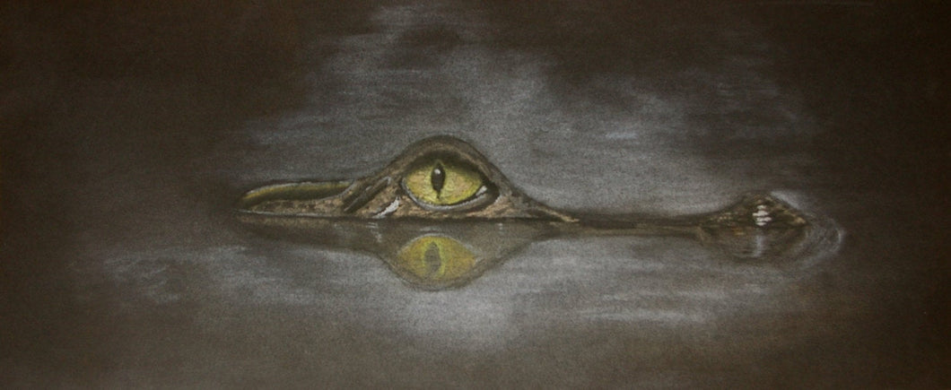 Alligator drawing 'Night Reflection' in Pastel - Surrealist Dream Drawing - Woods Imagery