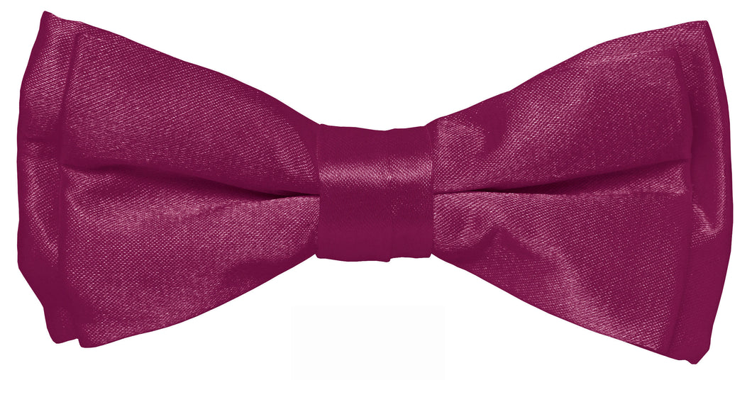 Plum Boys Solid Pretied Silky Bow Tie Only