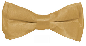 Tan Boys Solid Pretied Silky Bow Tie Only