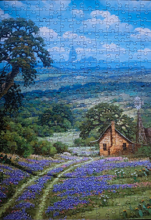 """Just North of Austin, TX"" by Randy Peyton 500 pc"