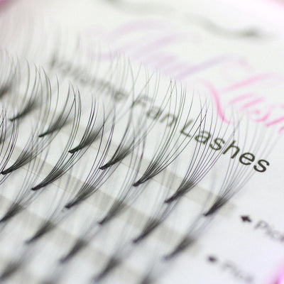 Pre made volume fan lashes - 6D clusters marco