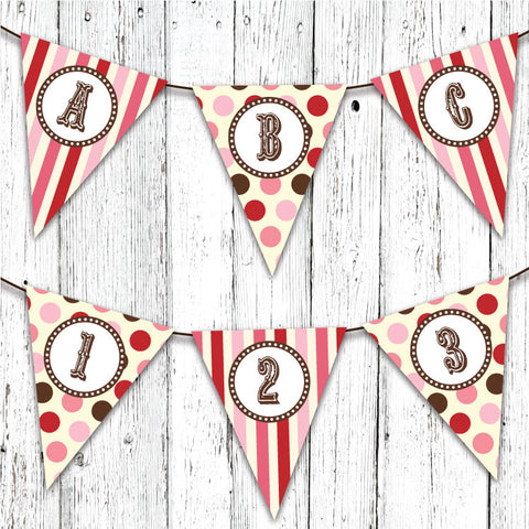 Vintage Carnival Circus Pennant Party Banner in Pink Red & Brown