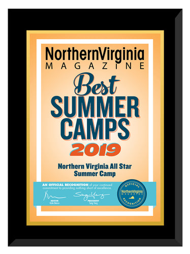 2019 Best Summer Camps Plaque