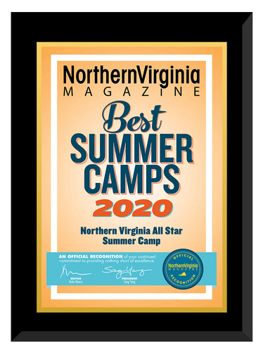2020 Best Summer Camps Plaque