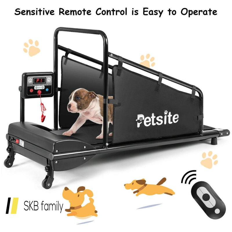 Pet Treadmill Indoor Exercise Pet Exercise Equipment With Remote Control 200815-22359