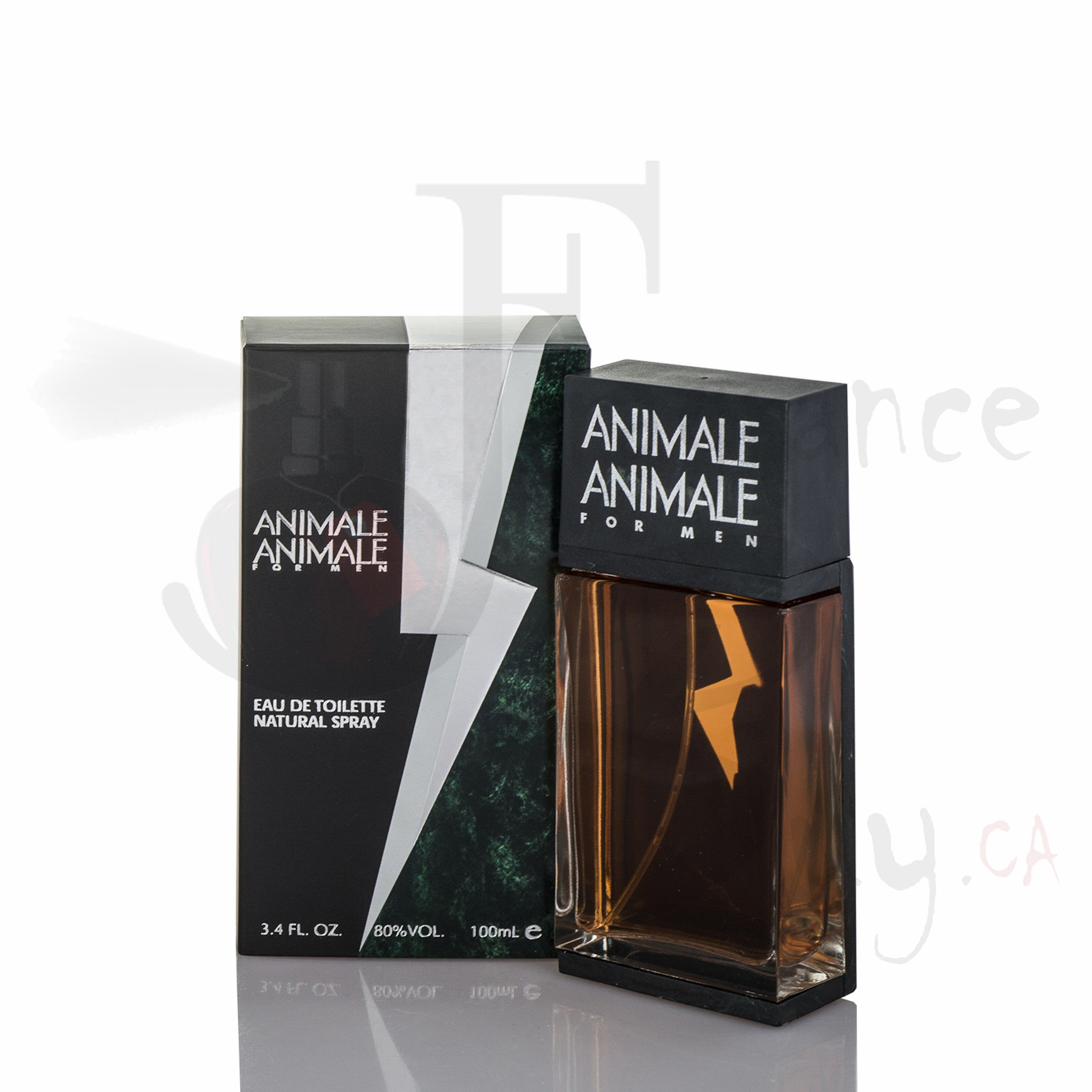 Animale Animale For Man