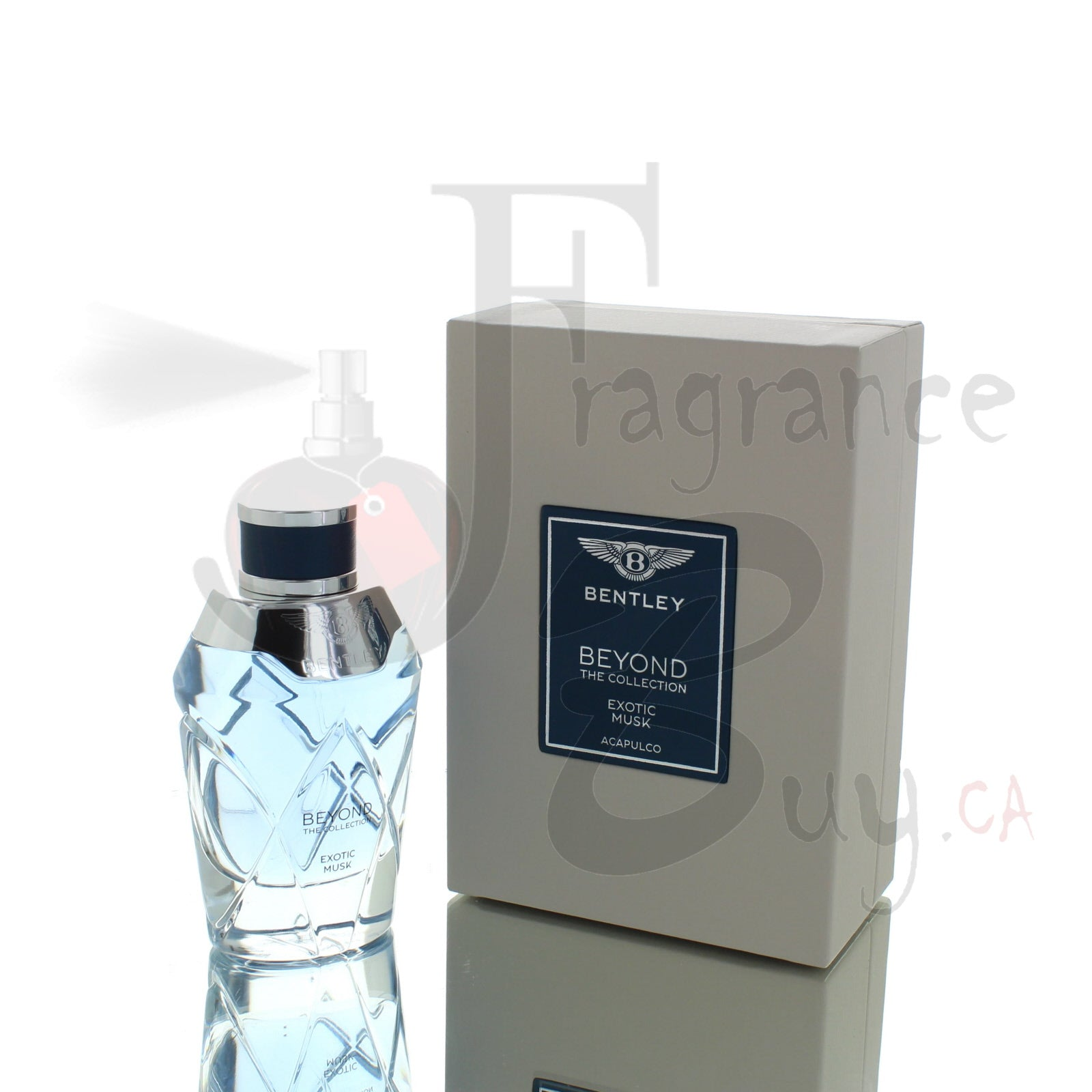 Bentley Beyond The Collection Exotic Musk Man/Woman