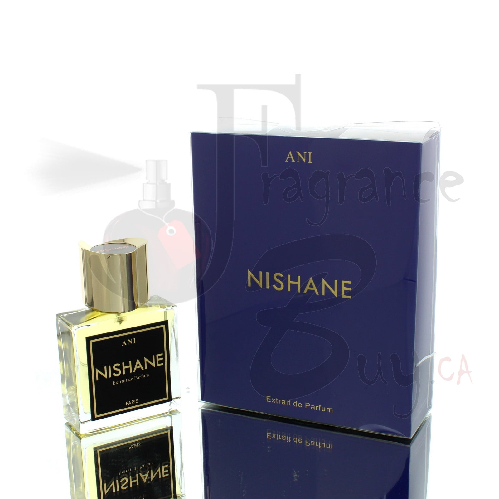 Nishane Ani For Man/Woman