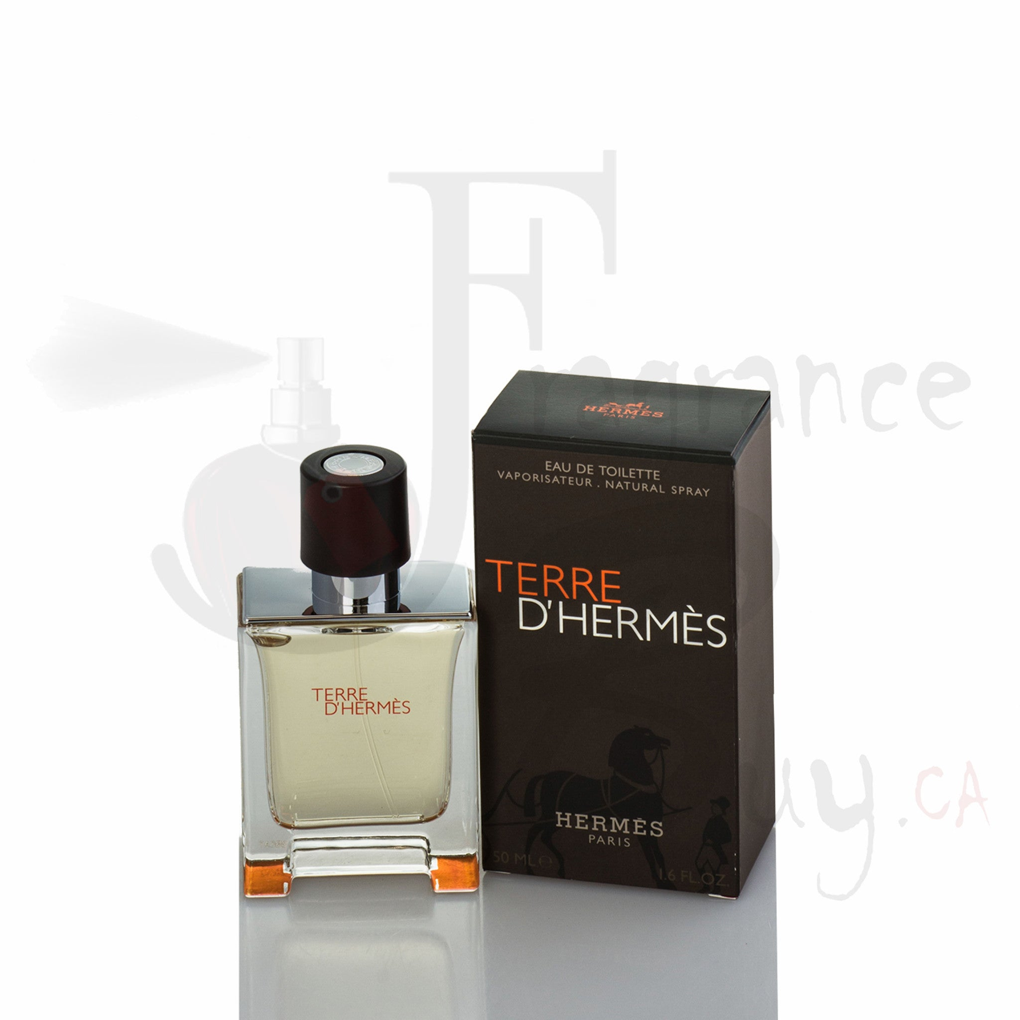 Hermes Terre For Man