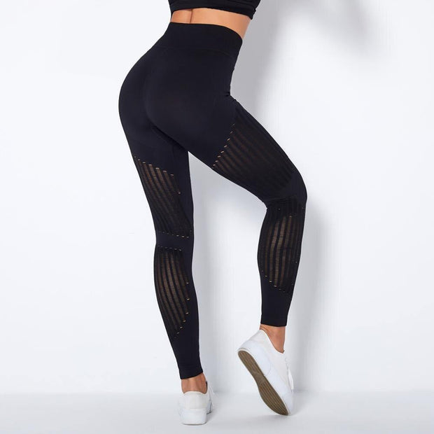 Butt Push Up Workout Jogger Leggings - Ahanova Sports