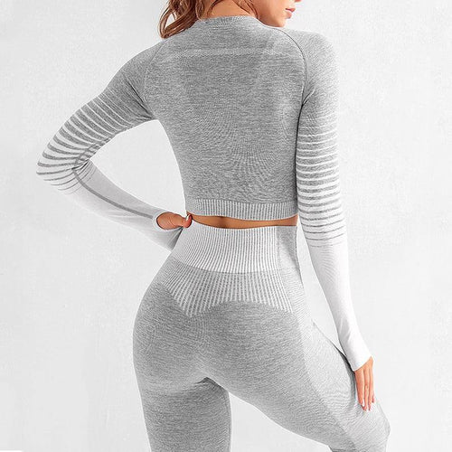 Seamless Rib Outfits 2 Piece Tight Fitness Sets - Ahanova Sports