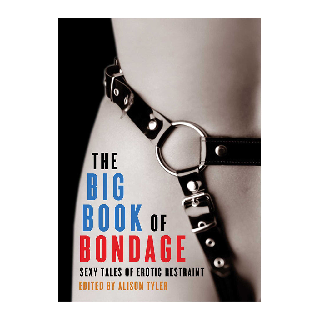 Big Book of Bondage: Sexy Tales of Erotic Restraint