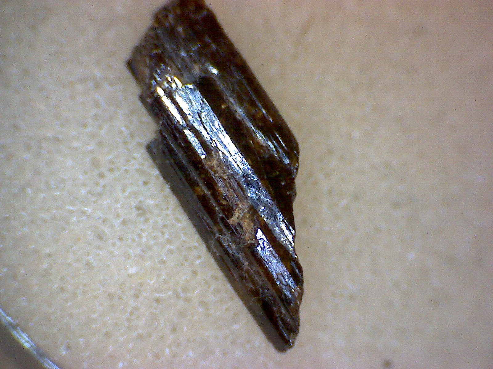 Painite crystal