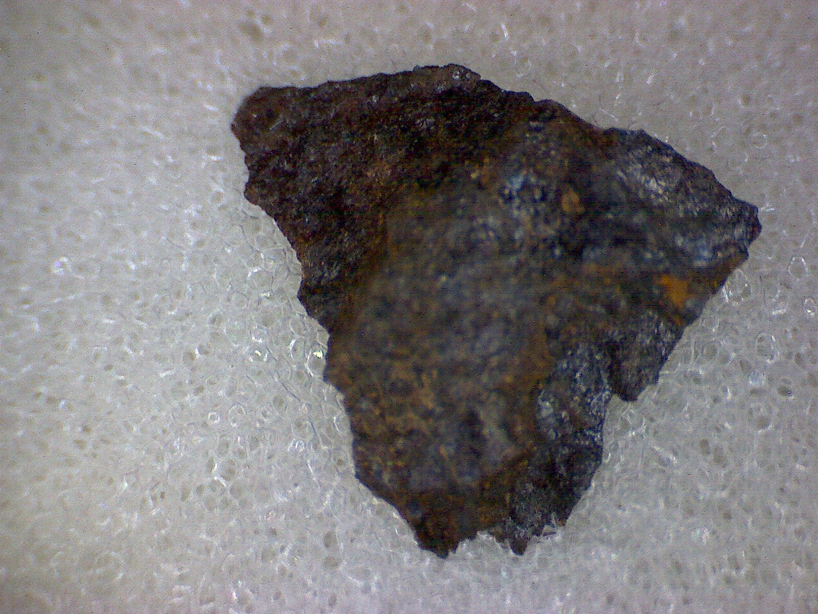 Northbranch Meteorite Specimen