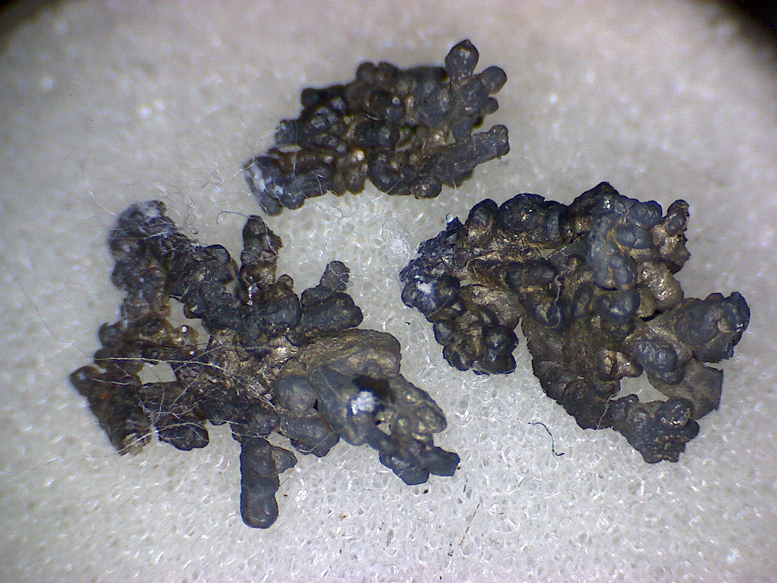Dyscrasite with silver specimens