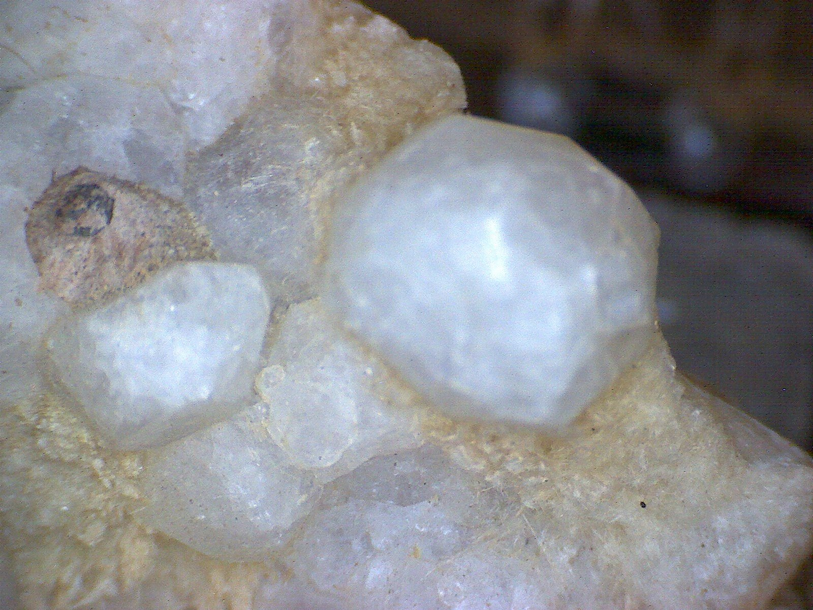 Analcime crystal