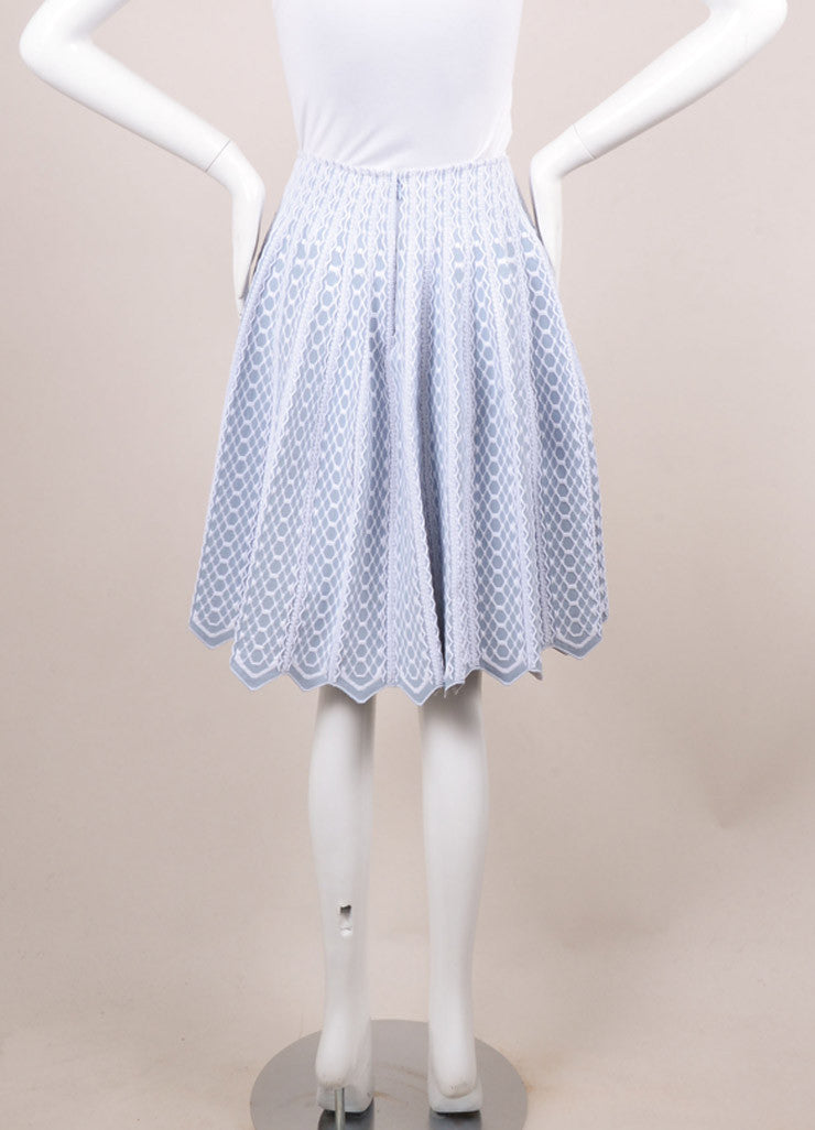 Alaia Blue and White Textured Pattern Full Pleated Skirt Backview