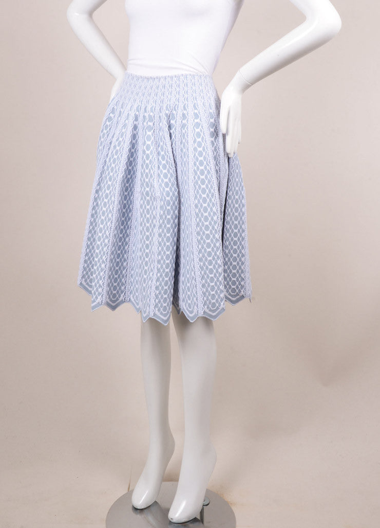 Alaia Blue and White Textured Pattern Full Pleated Skirt Sideview